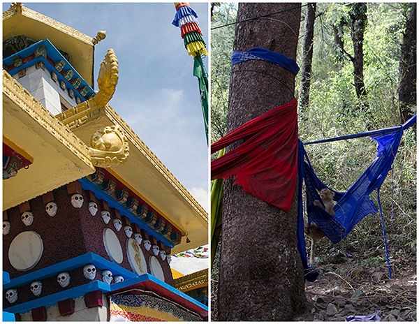Tsuglagkhang Temple and Tibetan Prayer Flags, McCleod Ganj, India