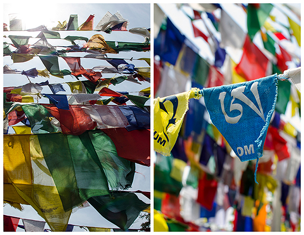 Tibetan Prayer Flags, Tsuglagkhang Temple, Mc Cleod Ganj, India
