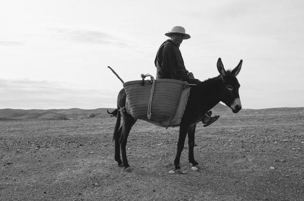 Marrakech, Morocco :: The Shepherd