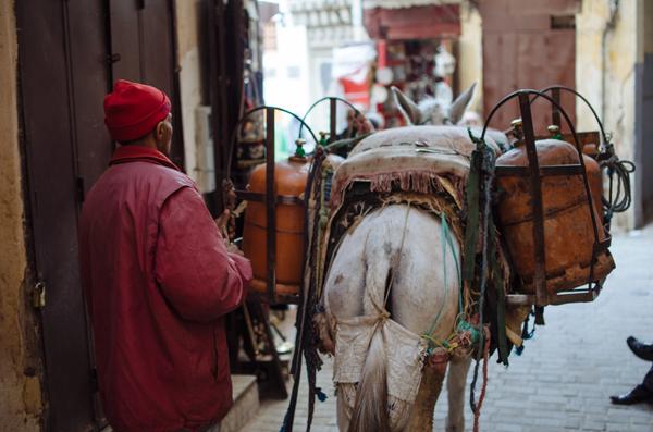 Morocco Honeymoon :: The Streets of Fez Medina
