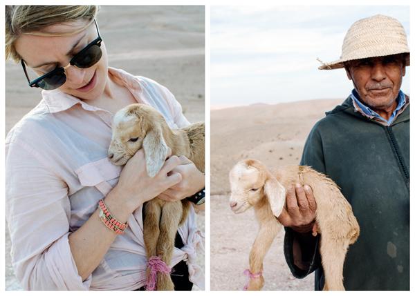 Marrakech, Morocco :: Cuteness Overload - Newborn baby goat