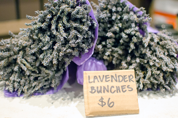 Eatwell Farm Harvest Fest :: Dried Lavender Bunches