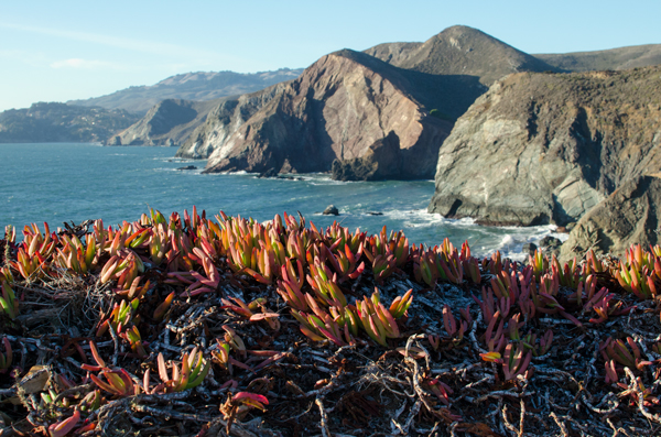 Hiking Marin Headlands - #SanFrancisco #Marin #Travel