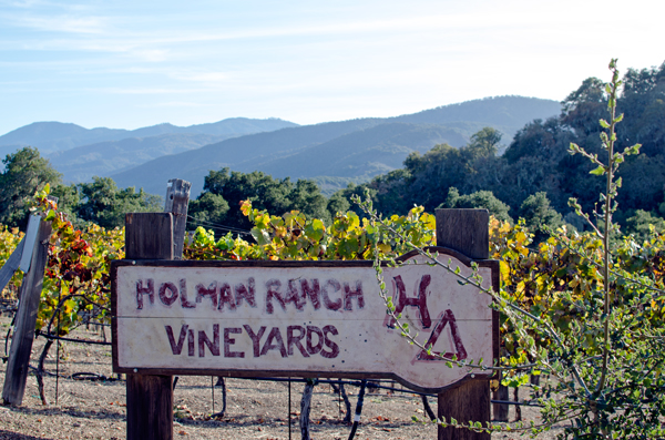 Holman Ranch Winery Carmel, California