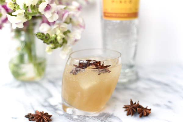 Fancy Cocktail Recipes :: Pisco Anise Cocktail