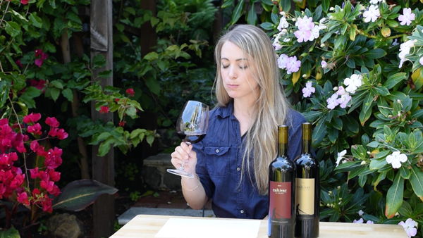 Video Tutorial for Tasting Wine - Look like a pro!
