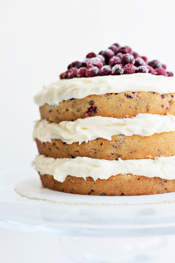 cranberry orange holiday cake recipe absolutely gorgeous