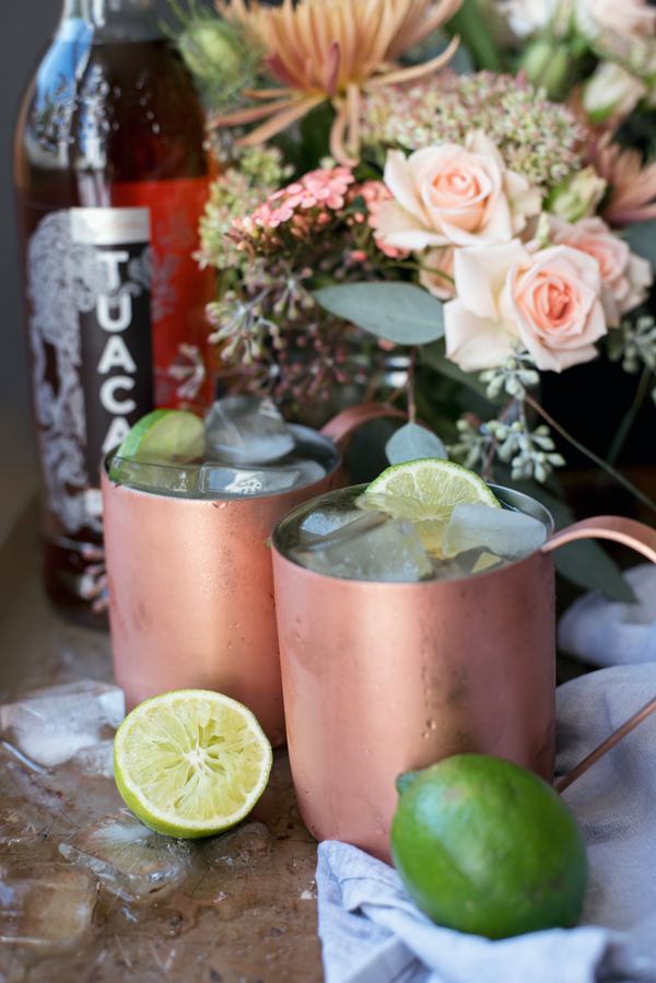 Best Cocktail Ideas - Tuaca Mule Recipe (a variation of the Moscow Mule)
