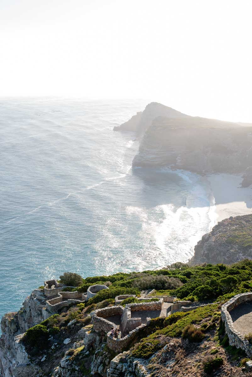 Cape Town Most Beautiful Beaches - Cape Point Fynbos