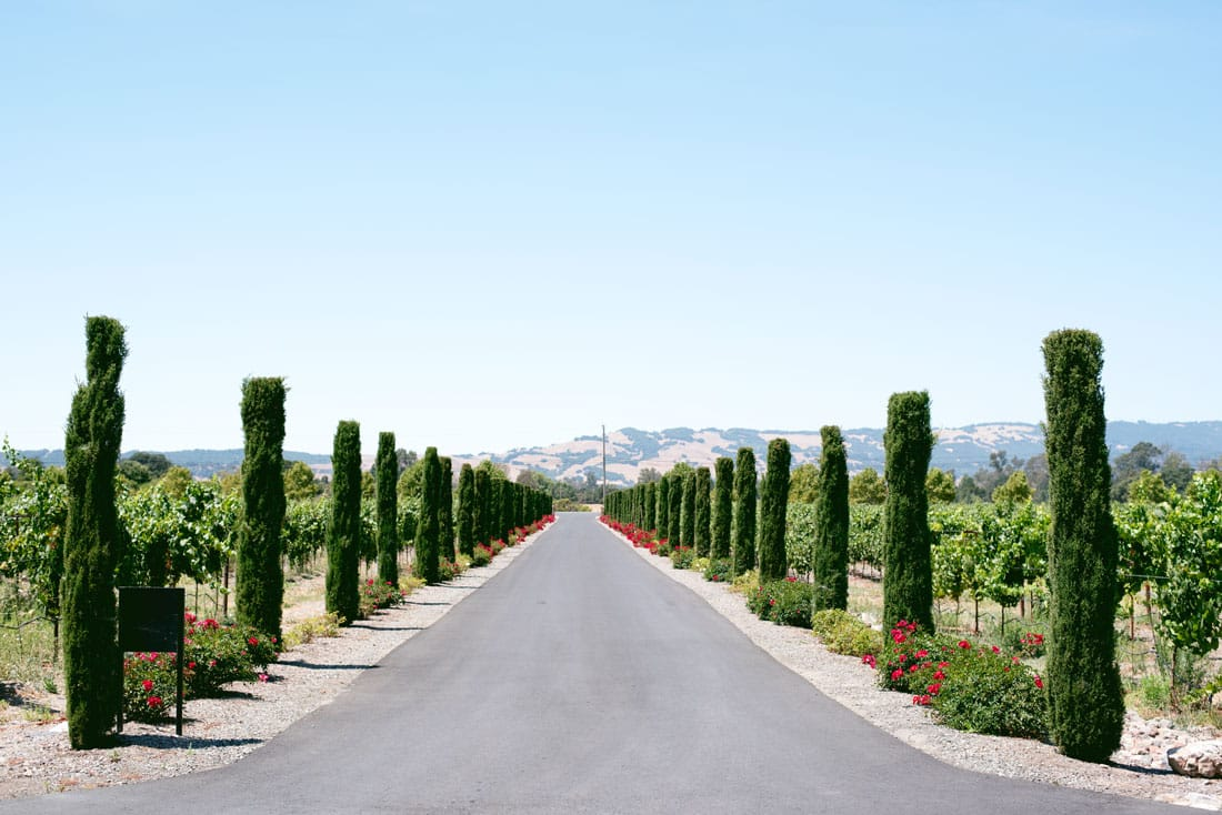 What to Do Sonoma Wine Country - Restaurants, Wineries and Wine Tasting