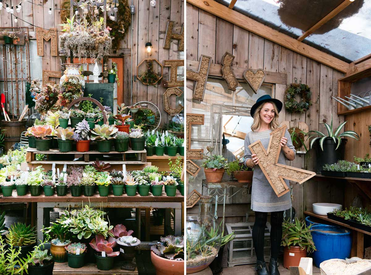 Plant Stores San Francisco - Succulence Cute Shop in Bernal Heights Neighborhood