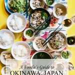 Epic Food Guide for Okinawa, Japan with explanations of traditional foods