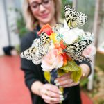 Ryugujo Butterfly Garden in Motobu, Okinawa, Japan