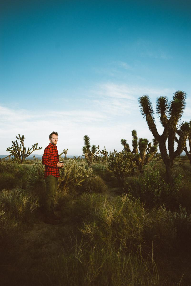 Camping Mojave Desert Preserve, California Free Campsites
