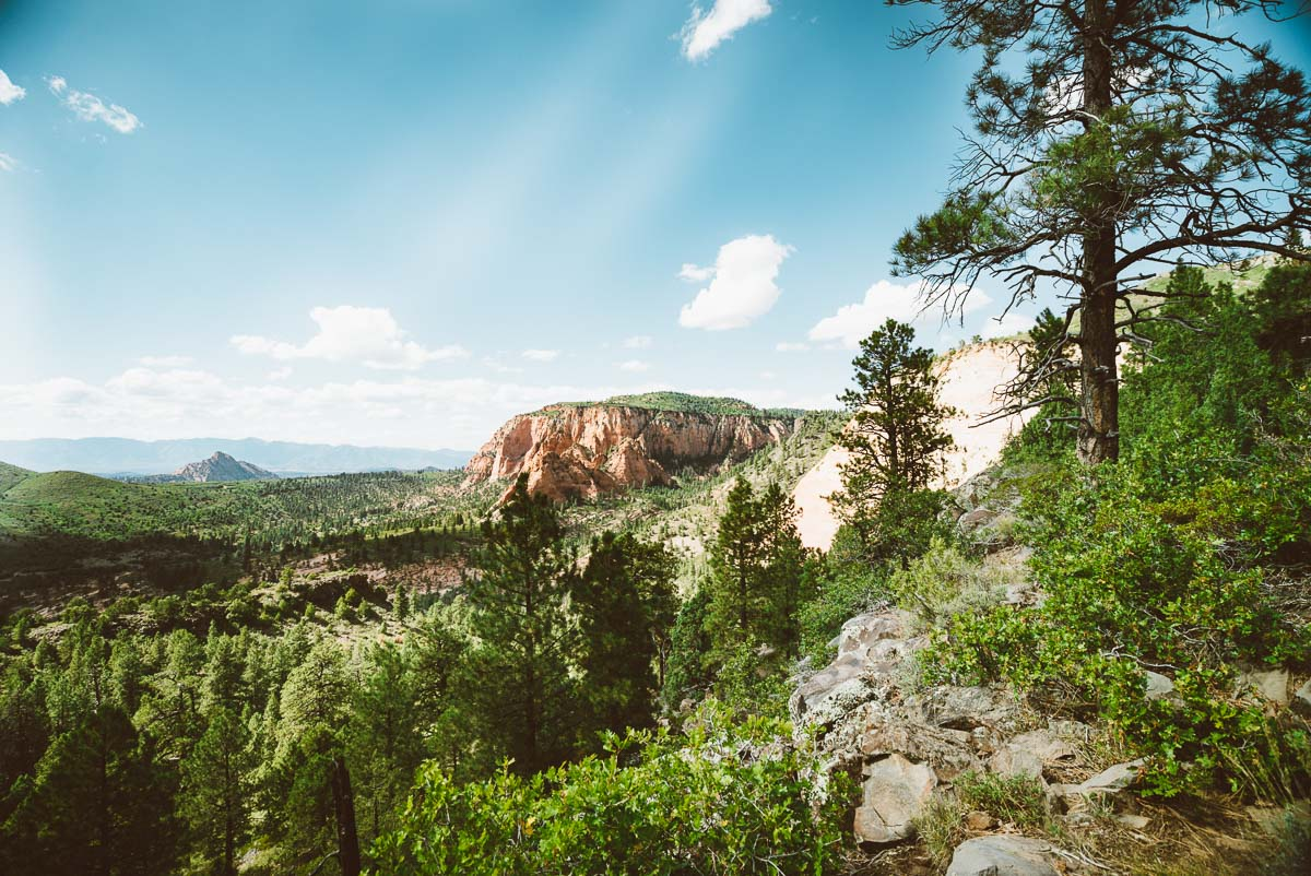 Best Views in Zion National Park + Easy Hikes