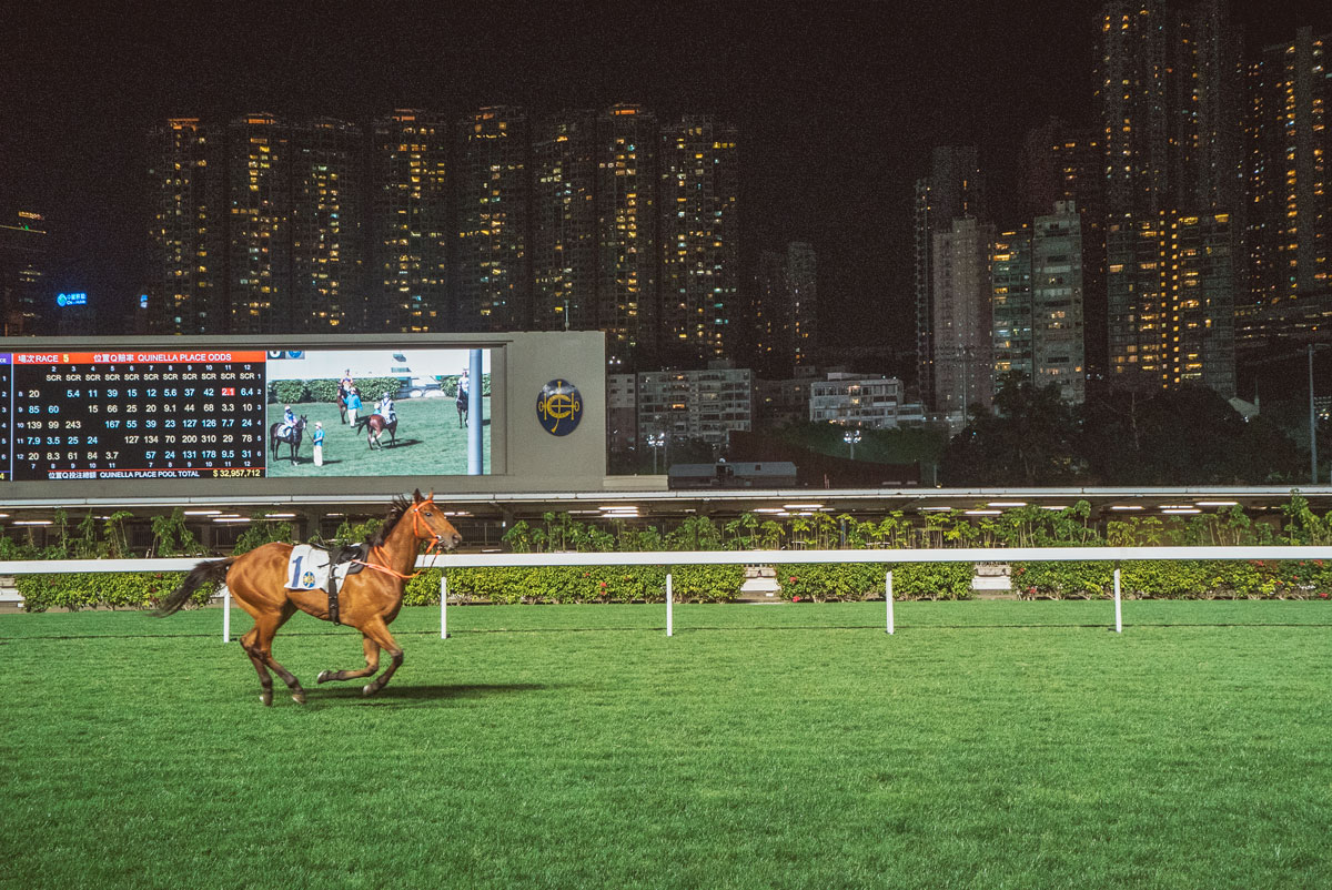To Do in Hong Kong - Happy Valley Racecourse Horse Racing