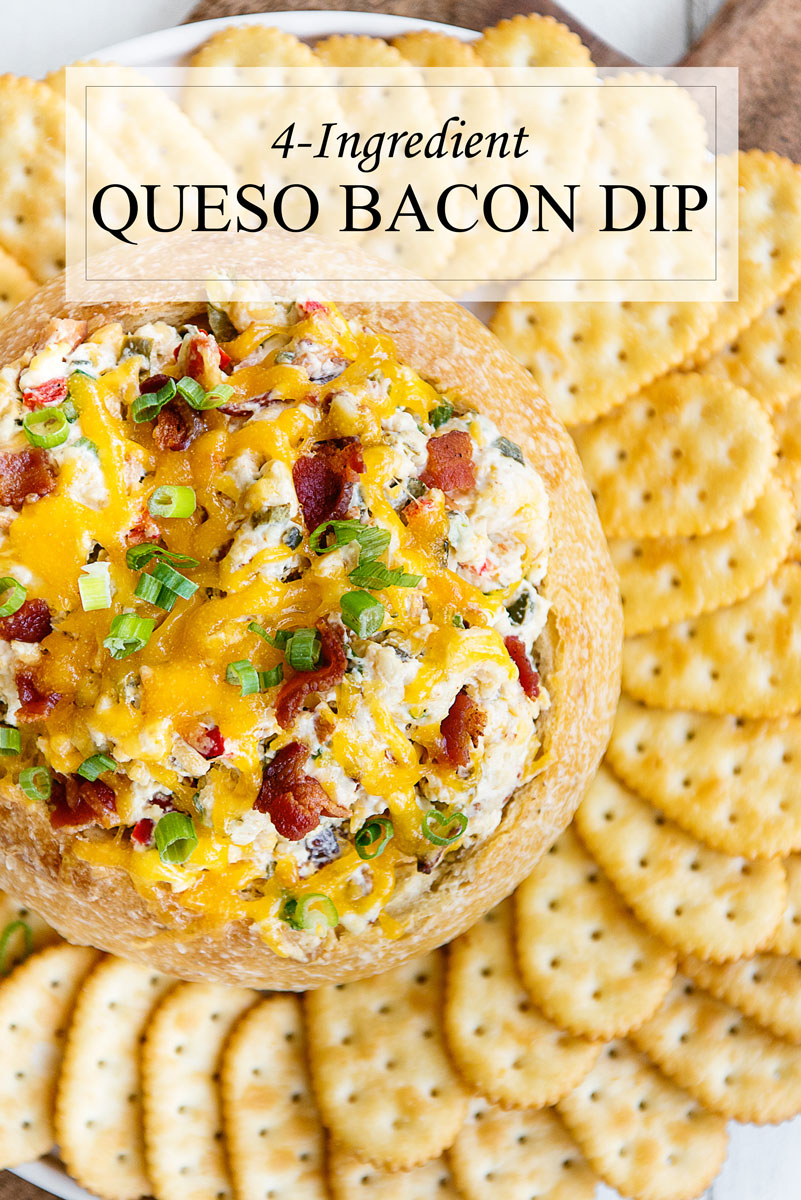 Warm Spicy Bacon Queso Dip Recipe with Cheddar Cheese Appetizer