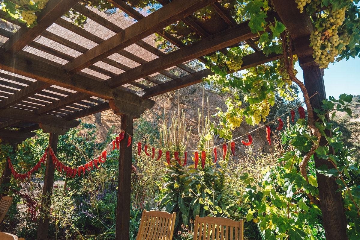 Wine Tasting Livermore - Wente Vineyards Tasting Room & Restaurant
