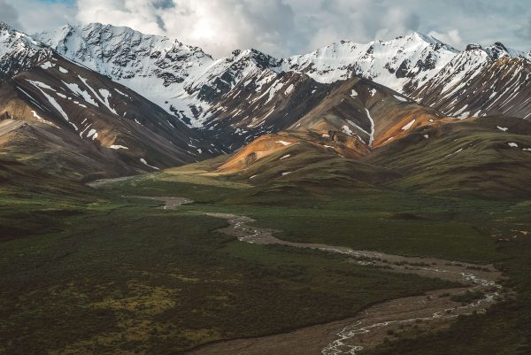 Bus Tour Review- What to Do Denali National Park