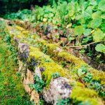 Gardens of Quintas das Lagrimas Fountain Love