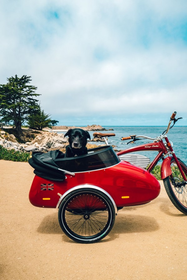 Mad Dogs Englishmen Bike Rentals Monterey, CA